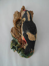 """Vintage Bossons Chalkware -Woodpecker by Fred Wright 12.5"""" long Wild Life Series"""