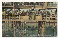 Fishing Net Haul, Youngs Pier ATLANTIC CITY NJ 1912 New Jersey Postcard