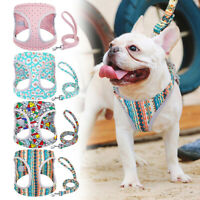 Mesh Dog Harness and Lead Set Fabric Step-in Vest Harness for Small Medium Dogs