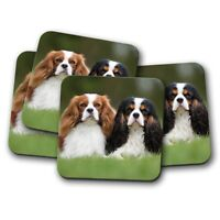 4 Set - Cavalier King Charles Spaniels Coaster - Dog Cute Pretty Pet Gift #15816