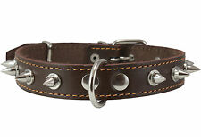 """Genuine Leather Dog Collar Spikes 14.5""""-18"""" neck 1"""" wide Amstaff Pitbull Boxer"""