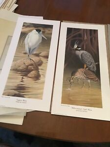 Don Eckelberry ( Night Heron Pair ) 2 lithograph prints series 2