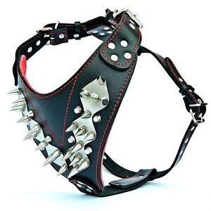 Genuine leather pit bull harness. spiked & studded. padded. stainless steel