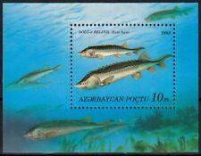 Aserbaidschan MiNr. Bl. 3 ** Fische