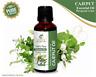Cajeput (Melaleuca leucadendron) Natural Essential Oil 0.17 To 3.38 Fluid Ounces