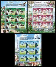 2011. Belarus. BIRDS. Pigeons. Sheets/Panes. MNH