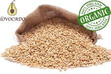 Organic Wheat Grain Berries/ 500g - 4.5kg / Free P&P / Premium Quality/ Lovocado