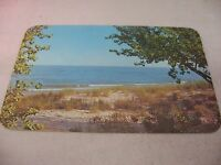 Vintage Postcard: Lake Michigan Shoreline Beach
