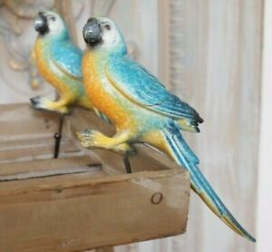 New French Vintage Shabby Chic Rustic Blue Wall PARROT Bird Coat Towel Hat HOOK
