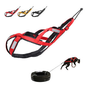 Sledding Dog Weight Pulling Harness Sport Reflective X-Back Adjustable Canicross