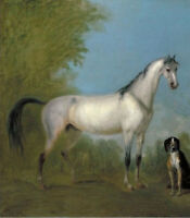 LMOP780 modern art animal fancy horse with dog hand art oil painting on canvas