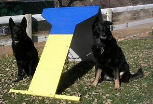 Dog Agility Equipment Mini Contact Trainer (Dog walk - A Frame/AFrame)