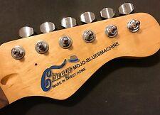 Waterslide Decal Rhythm Blues Blues Muddy Chicago Boogie Rock& 1 Fender Plektrum