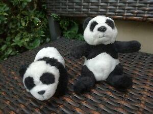 Nici Panda Macnici und Plüschpanda