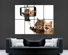 CATS FUNNY SELFIE POSTER HUMOUR SMARTPHONE MOBILE CAT WALL ART SELFIE STICK