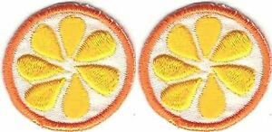 """Lot 2 1 """" Orange Agrumes Fruit Broderie Patch"""