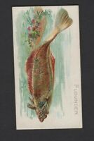 1889 Allen & Ginter N8 50 Fish from American Waters Flounder