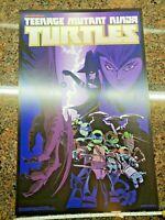 Teenage Mutant Ninja Turtles Poster TMNT Nickelodeon TV Show Movie Comic NYCC