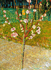 Almond Tree in Blossom by Vincent van Gogh A3 High Quality Canvas Art Print