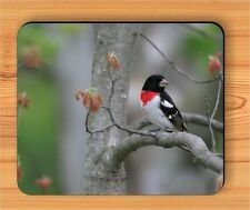 BIRD GROSBEAK ROSE BREAST BREED MOUSE PAD -awo8Z