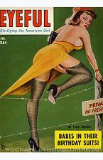 Pin Up Girl Poster 11x17 Eyeful magazine cover art Nylons February