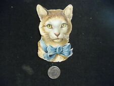 Victorian scrap # 7362 - KITTEN WITH BLUE BOW