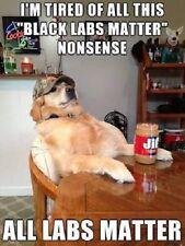 """Funny Golden Retreiver dog refrigerator magnet 2 1/2 X3 1/2 """""""