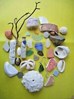 Surf-Tumbled Beach Find Mix-CORAL Pottery SEA GLASS China Shells DRIFTWOOD LBFM8