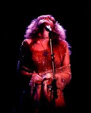 """8x10 (after matting) matted """"Stevie Nicks"""" concert photograph+ replica tic stub"""