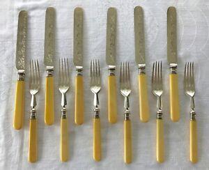 Set 12 Antique Dessert Cutlery Faux Bone Handles Silver Bands 1889
