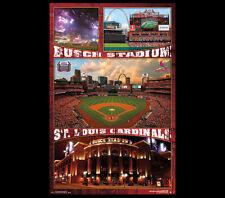 St. Louis Cardinals BUSCH STADIUM CELEBRATION MLB Baseball Wall POSTER