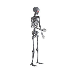 Skeleton Poseable Spooky 5 ft LED Halloween Outdoor Indoor Yard Decorations NEW