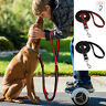 No Pull Pet Dog Lead Stretch Elastic Bungee Nylon Lead Training for Large Dogs