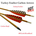 Archery Carbon Arrows 500 Spine with Replaceable Tips for Compound &Recurve Bows