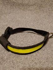 Pet Safety Illuminated Flashing Reflective Dog Collar