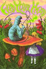 Feed Your Head Alice in Wonderland Hookah Caterpillar Art 24x36
