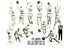 1959 1960  ST. LOUIS HAWKS 8X10 TEAM PHOTO  BASKETBALL