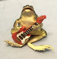 Large Real Frog In Whimsical Sitting Position Singing W/ Guitar...Novelty