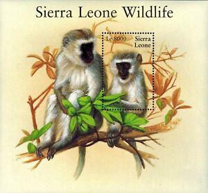 MODERN GEMS - Sierra Leone - Wildlife Monkey - Souvenir Sheet - MNH