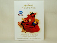 Hallmark 2009 Disney Ornament Christmas Is in the Bag The Lion King Pumbaa Timon