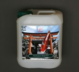 5 l Tottori Milchsäurebakterien 5000 ml probiotische Bakterien Filterbakterien