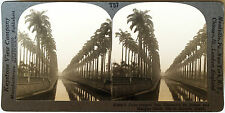 Keystone Stereoview of Mangue Canal, Rio de Janeiro, BRAZIL from 1930's T400 Set