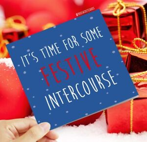 It's time for some festive intercourse / Funny Rude Humorous Christmas Card