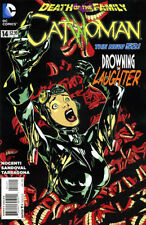 Catwoman #14 2011 New 52 DC Comics