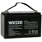 Weize 12V 100AH Deep Cycle AGM SLA Battery for RV Solar System Camping UB121000