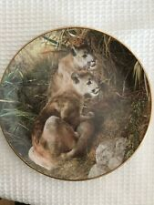 Shadows In The Grass Plate A Family Affair By Carl Brenders (Mountains Lions)