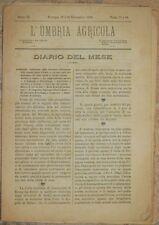 L'UMBRIA AGRICOLA 15 30 SETTEMBRE 1885 CAVALLI SAN PIETROBURGO JESI VINO WINE