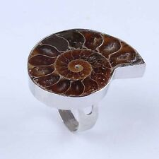 1x Natural Ammonite Fossil Gemstone Unisex Adjustable Stone Finger Ring Jewelry