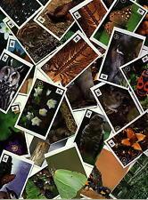 Edeka WWF Sticker 15 aussuchen Sammelbilder Unser Wald Mit 180 Stickern die ...