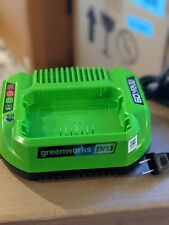 Greenworks Pro Battery Charger 60V Lithium-Ion CAC801 60 Volt